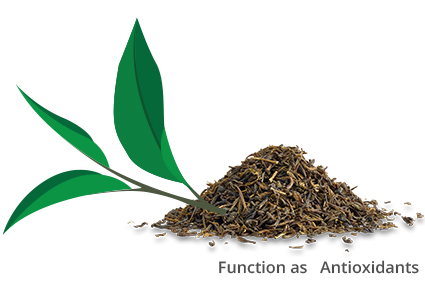 Kodėl arbatą gerti sveika?