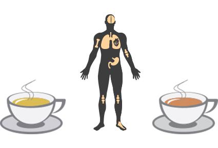 Ar šviežia arbata turi daugiau gerųjų savybių nei užsistovėjusi?