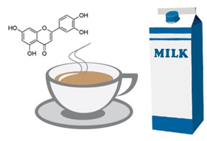 Ar į arbatą įpylus pieno sumenksta jos gerosios savybės?